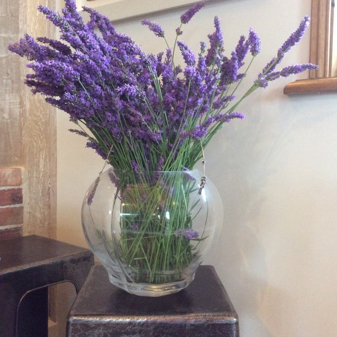 A bunch of lavender. When dry, it will be put into sachets in the linen cupboard.