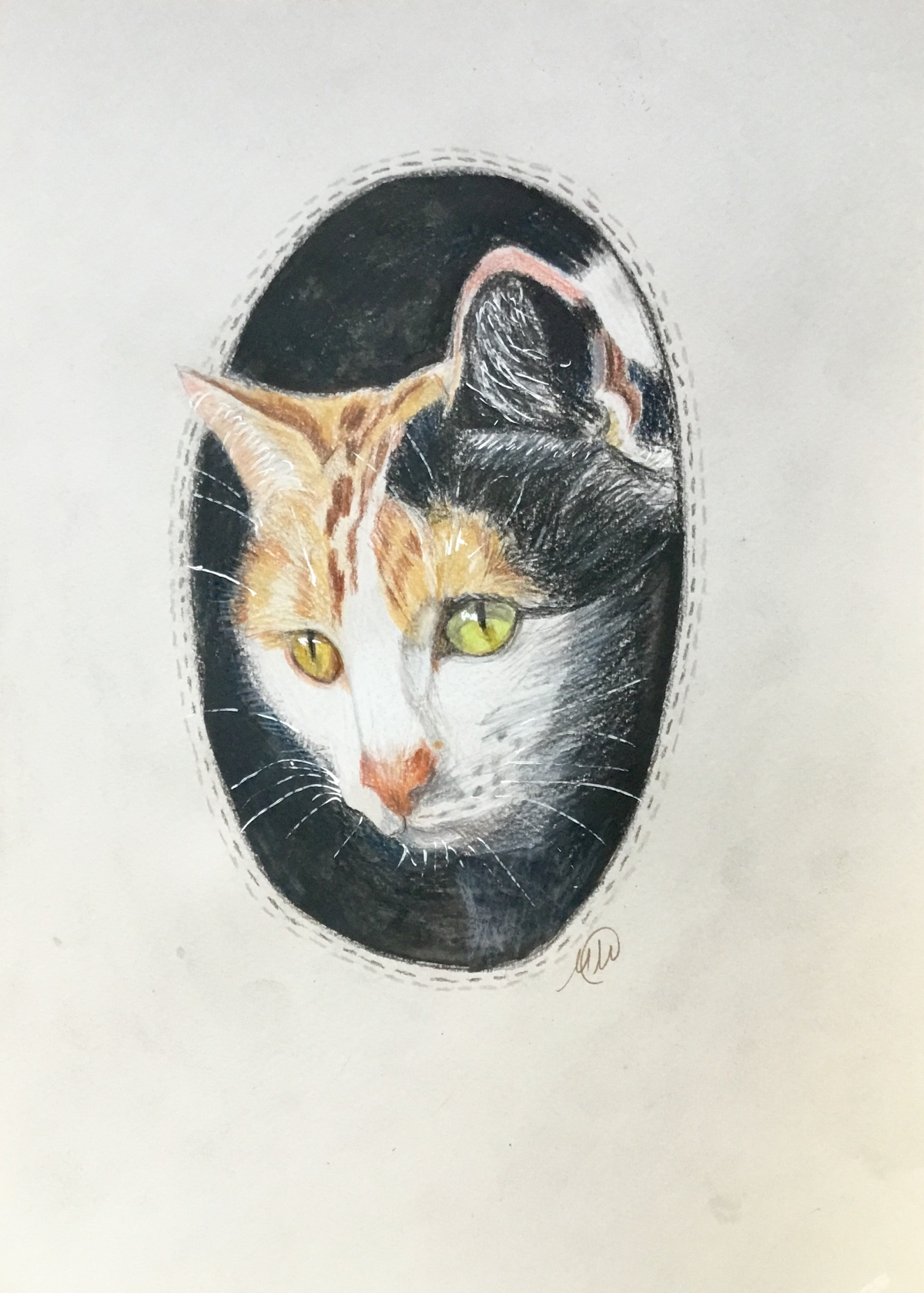 A collection of pet portraits